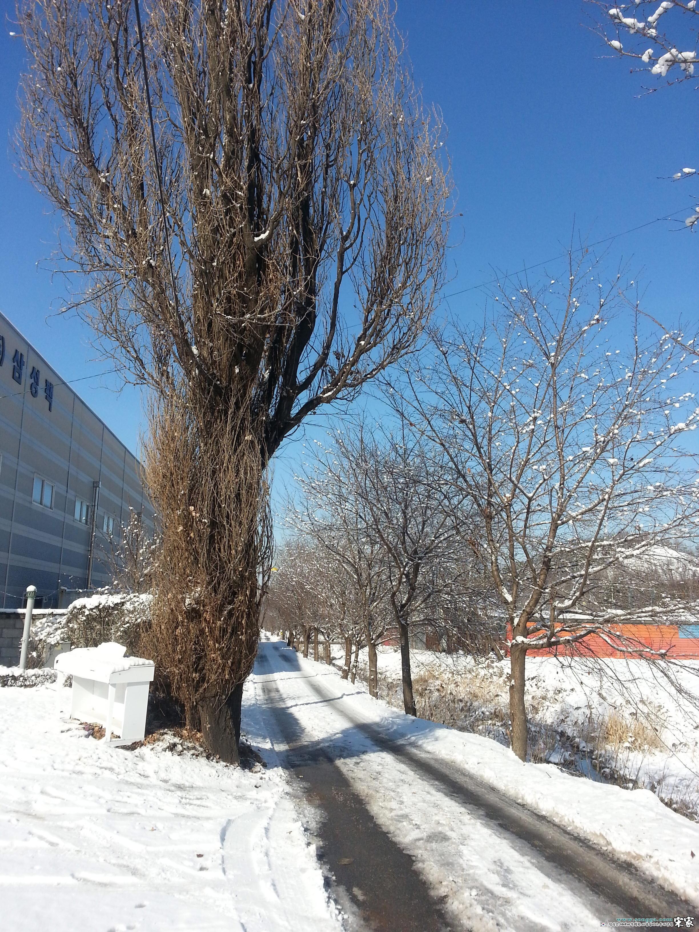 20121206_122513.jpg